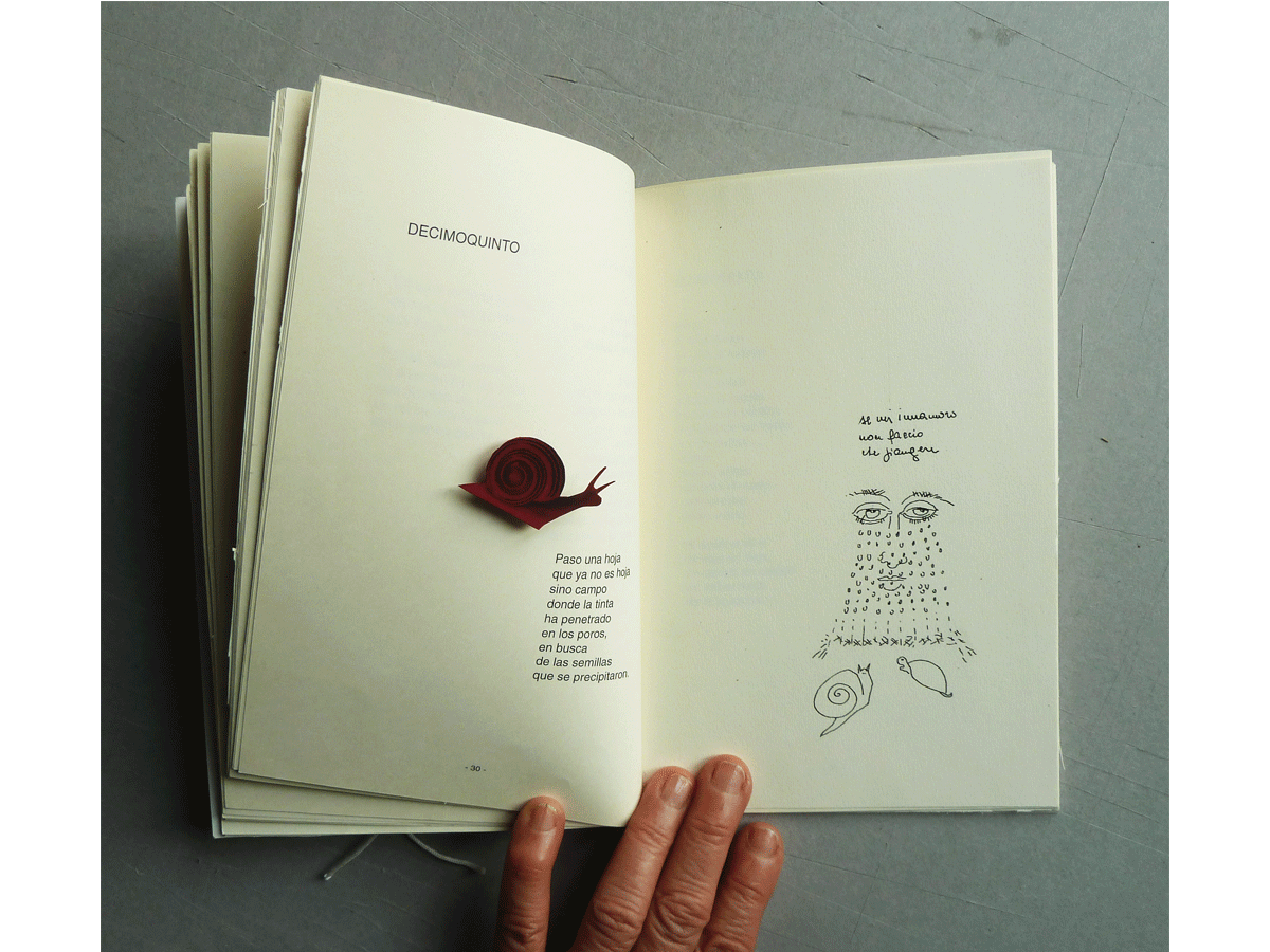 Dialogo aperto - omaggio aun poeta