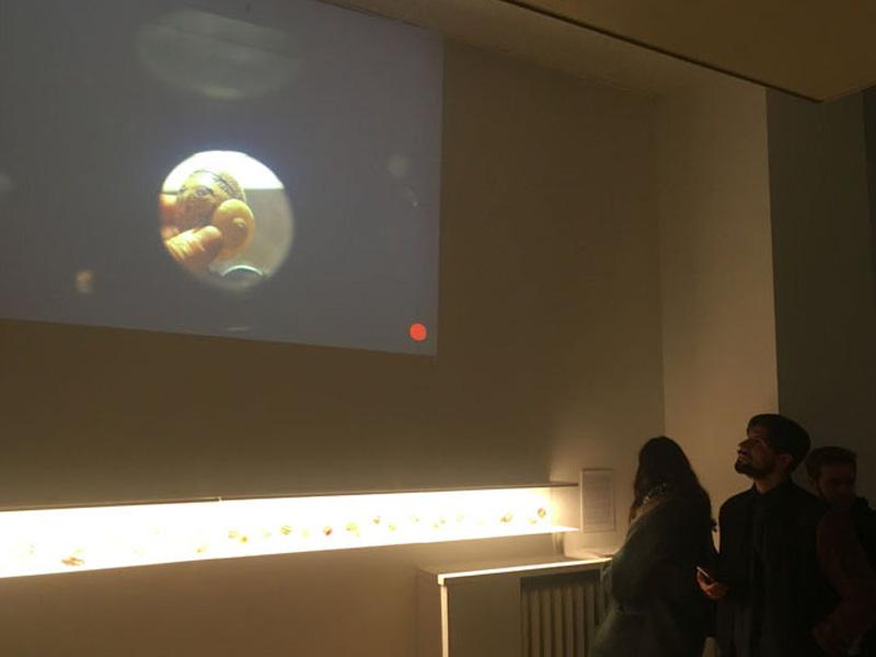 video proiezione Lo Presti dello Studio Mammafotogramma